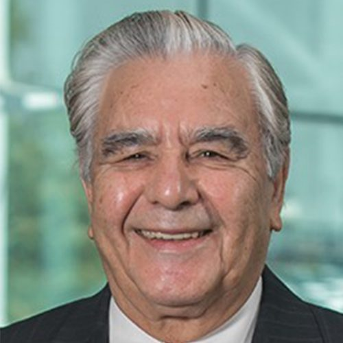 Mahmoud Daneshmand